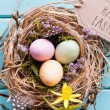 Offerta di Pasqua all'Hotel Elios